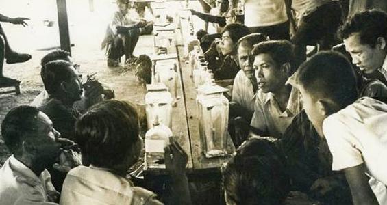 kegiatan judi ikan cupang di thailand