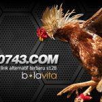 PB0743.COM Alternatif Link S128 Sabung Ayam Baru
